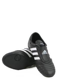 کفش مردانه مخصوص تکواندو آدیداس مدل Adi SM III Aditss03